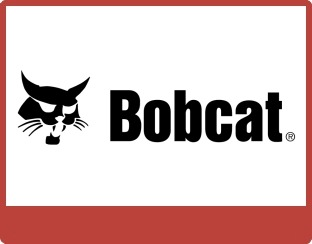 gallery/but_bobcat
